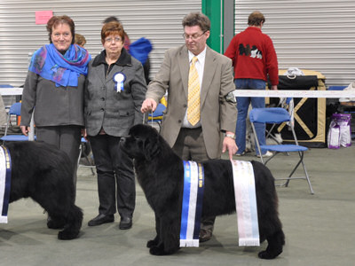 Best Puppy in Show & Reserve Best in Show