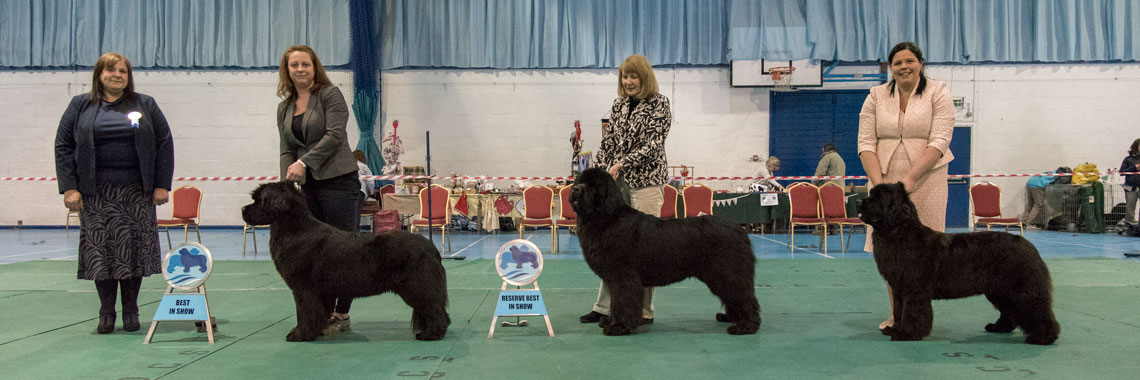 Best In Show winners with show judge